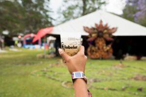 festivales-ecologicos-vasos